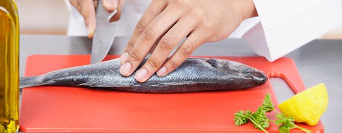 Todo peixe tem espinha?